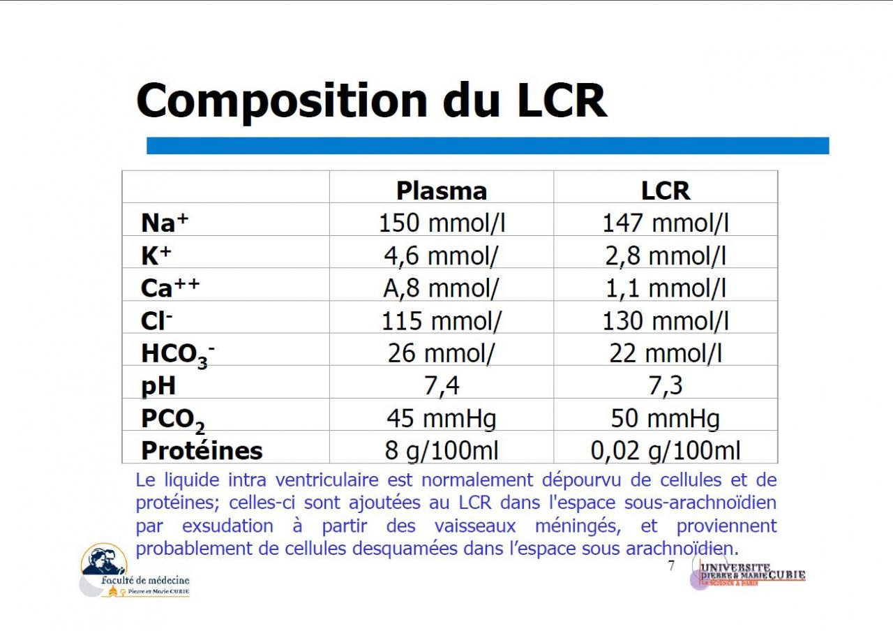 Composition du LCR (2)