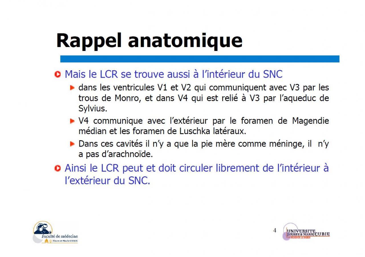 Liquide céphalo-rachidien (rappel anatomique)3